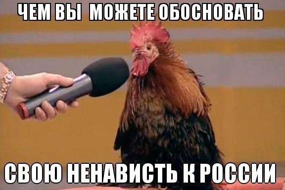 seychas-v-zhopu-nu-kak